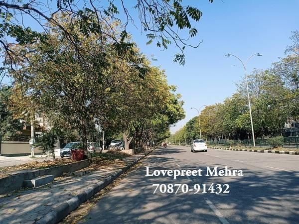 500 Gaj Plot in Sector 69 Mohali | Residential Plot for Sale