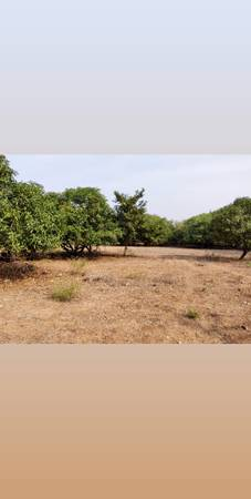 farm house land for sale at kappgal road bellary.