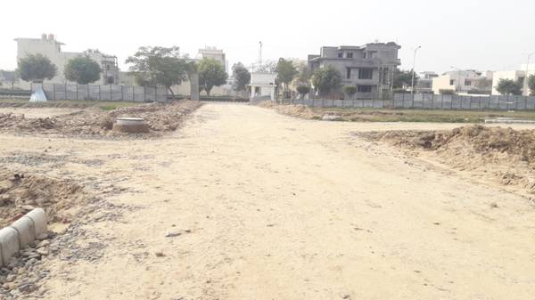 TDI Sector 118 Gated Plot  Yard 2 side Open Mohali