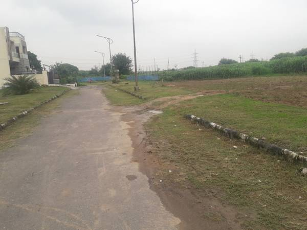 Yard Single Lane Plot Prime Location TDI City sector