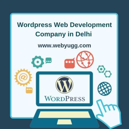 Wordpress Web Development Company in Delhi   www.webyugg.com