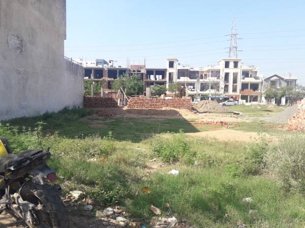 TDI City Sector 118 Residential Plot 364 yard for Sale