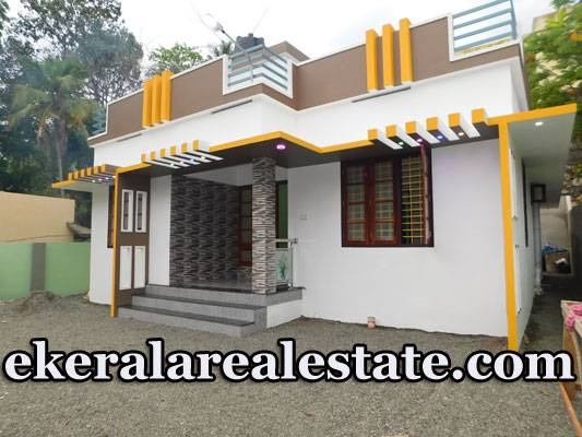 New House Sale in Peyad