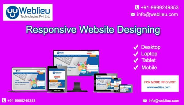 WEBLIEU - Website Designing Company in Delhi | Best SEO