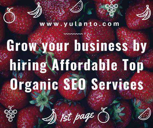 Affordable Top organic SEO services