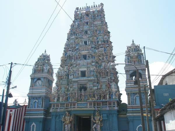 Book Sri Lanka Family Tour Package - 7 Days