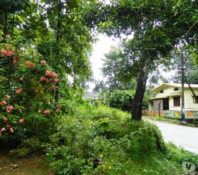 Anchal 10 cents of prime residential land for sale