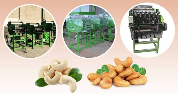 Looking for the best Cashew Machine Manufacturers
