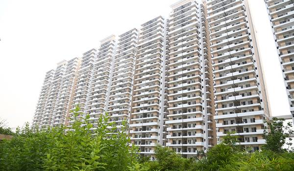 Ace City Ready tio Move 2 BHK in Noida Extension  