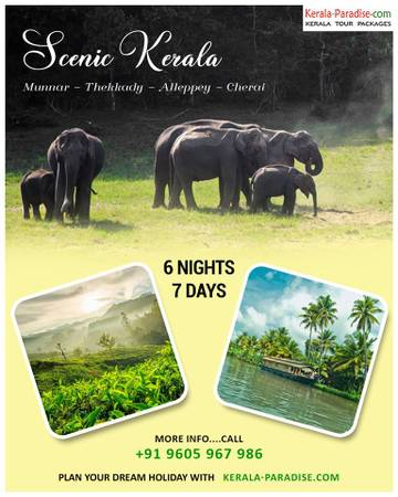 Grand Kerala Tour packages with Kerala Paradise the best