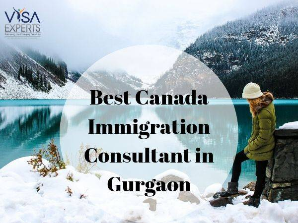 Best Canada Immigration Consultants in Gurgaon?