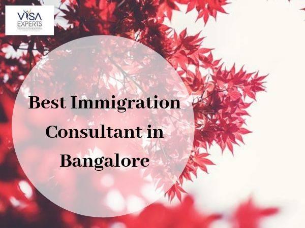 Best Immigration Consultants in Bengaluru
