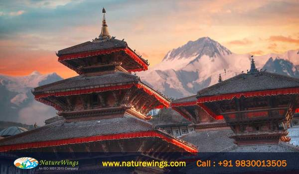 Best Nepal Tour Package from NatureWings