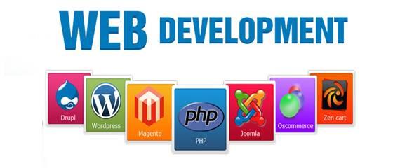 Professional Website Development Service in Delhi NCR