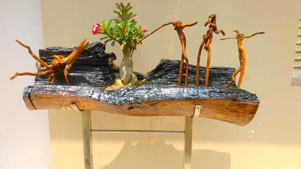 Explore The Beauty Of Driftwood|Bay Island Driftwood Museum