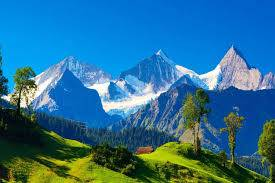 Travel Agent in Himachal