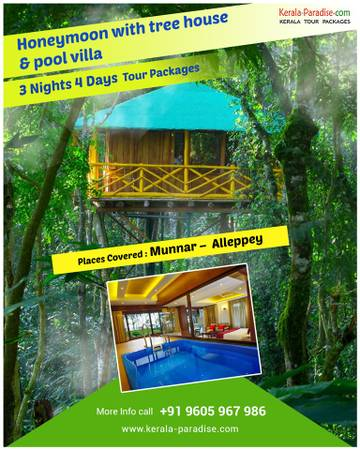 Explore the beauty of Kerala with South India Tour Packages