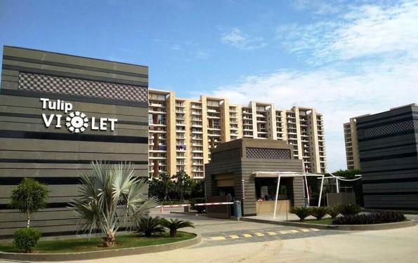 Tittle 3 BHK Luxury apartments in Gurugram Tulip Violet