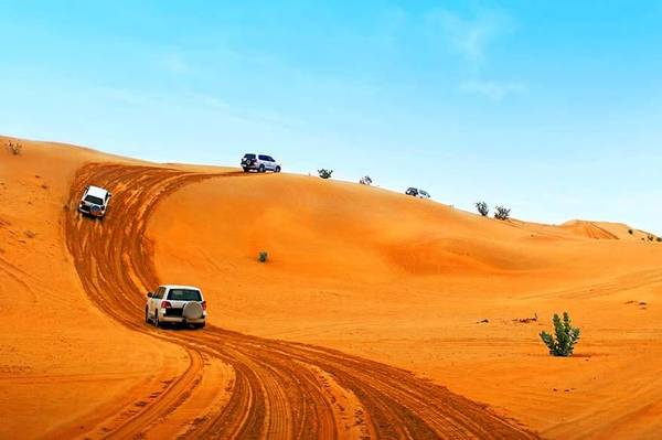 Best Activities To Do In Dubai Tours