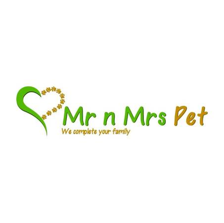 Find Healthy Dogs & Puppies for Adoption in Noida | Mr n Mrs
