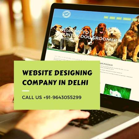 Tech India Infotech - Best Website Designing Company in