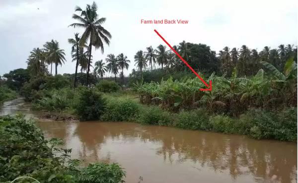80 cents Farm house land near Noyyal River, Coimbatore