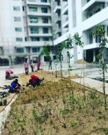 Ambience Creacions: 3 BHK Apartments in Gurgaon