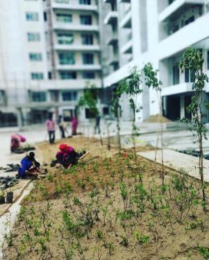 Ambience Creacions 3 BHK Apartments in Gurgaon