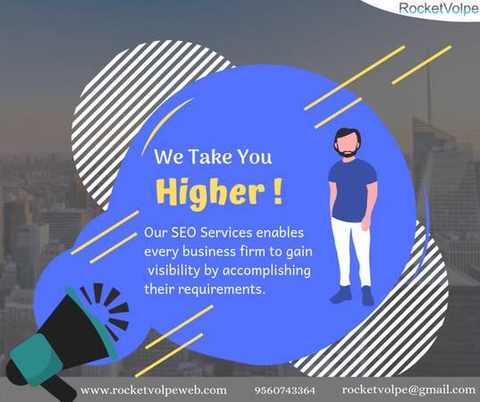 Professional SEO Services in Delhi
