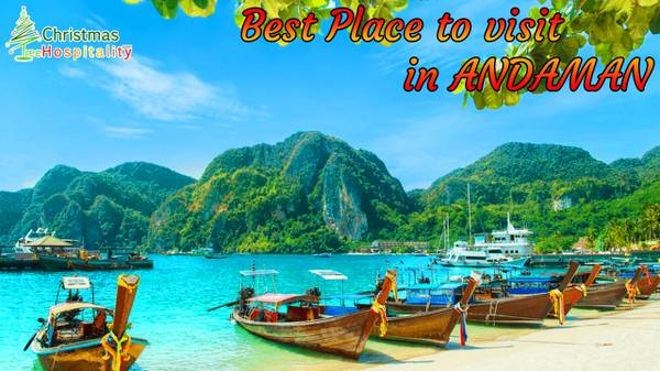 Christmas Tree Hospitality - Andaman Tour Packages And