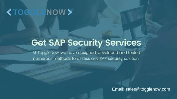 SAP Security and GRC Strategy Services | ToggleNow