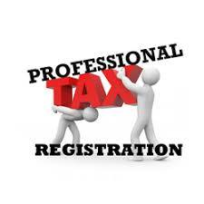 Professional Tax Registration Consultant in Chennai