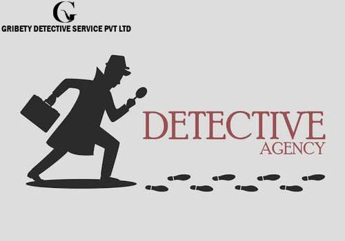 Gribety - Detective Agency in Jaipur