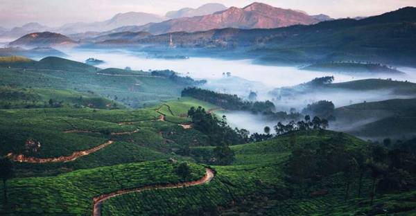 Witness The Beauty Of Munnar With Kerala Tourism Enterprises