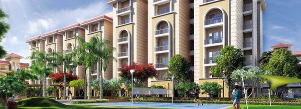 3 BHK Flat for Sale at City of Dreams in Sector 115