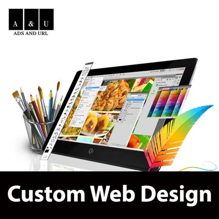 Professional Custom Web Designing Services In USA