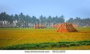 18 acres residential land for sale at Chikkabanavara Mn Rd