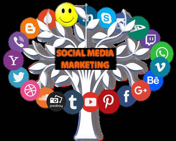 Social Media Marketing In Delhi NCR