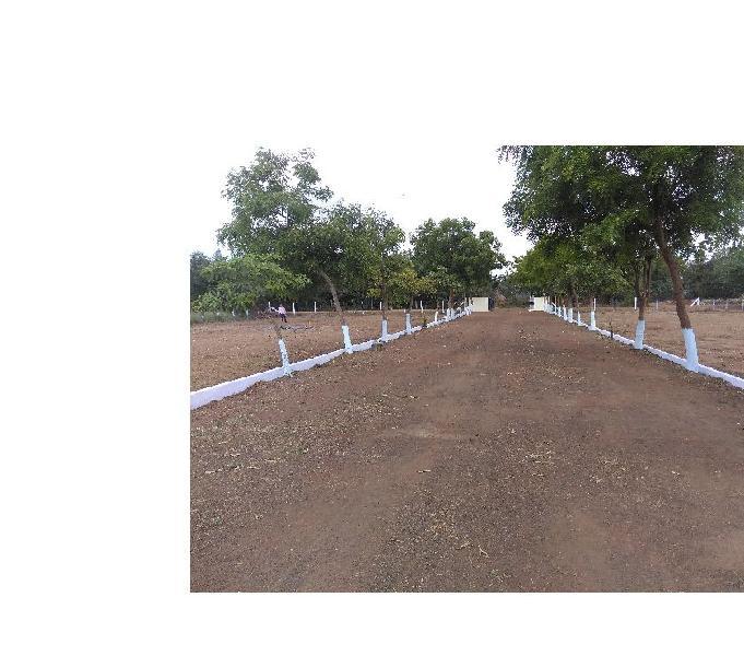 KOLAMURU - North West Corner Plot with 260 Sq. Yards