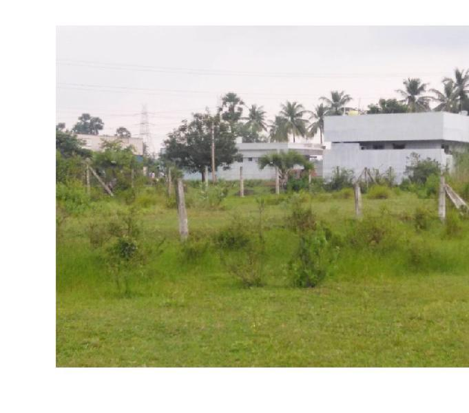 RAJAVOLU West 201 Sq. Yards Open Plot - Ready to Construct