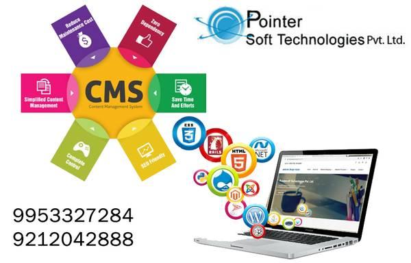 Online fast services like website design Delhi