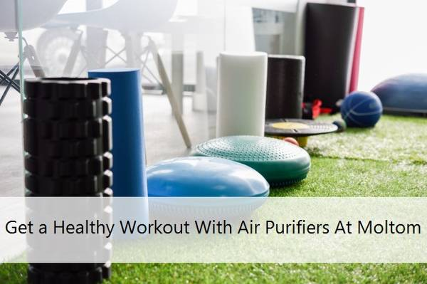 Get a Healthy Workout With Air Purifiers At Moltom