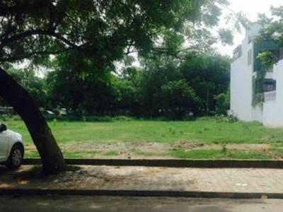 Plot Sale A Block DLF Phase 2 Gurgaon