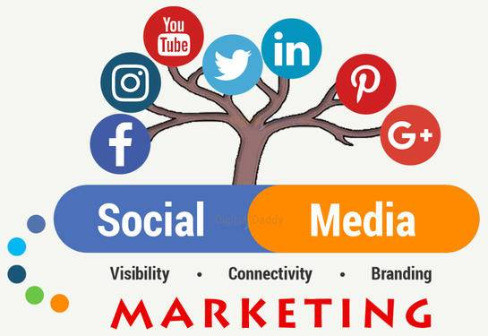 Social Media Services in Noida