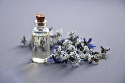Herbal extract in Delhi