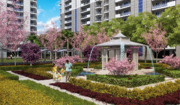 DLF Ultima Ultra Luxurious 3 BHK at Sector 81 Gurgaon