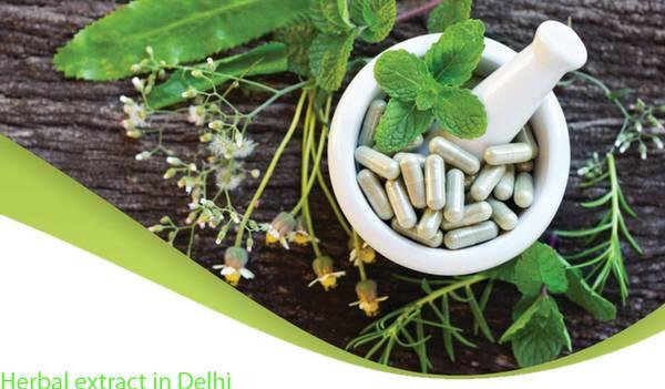 Herbal Extracts In Delhi