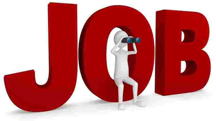 JOB CONSULTANCY IN UDAIPUR | TOP PLACEMENT AGENCY IN UDAIPUR