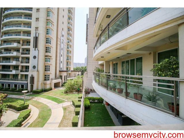 4 BHK Apartments in Gurugram | DLF Aralias for Rent on Golf