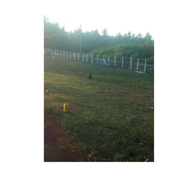 DTCP Approved kumbakonam plot for sale at Ganapathi nagar